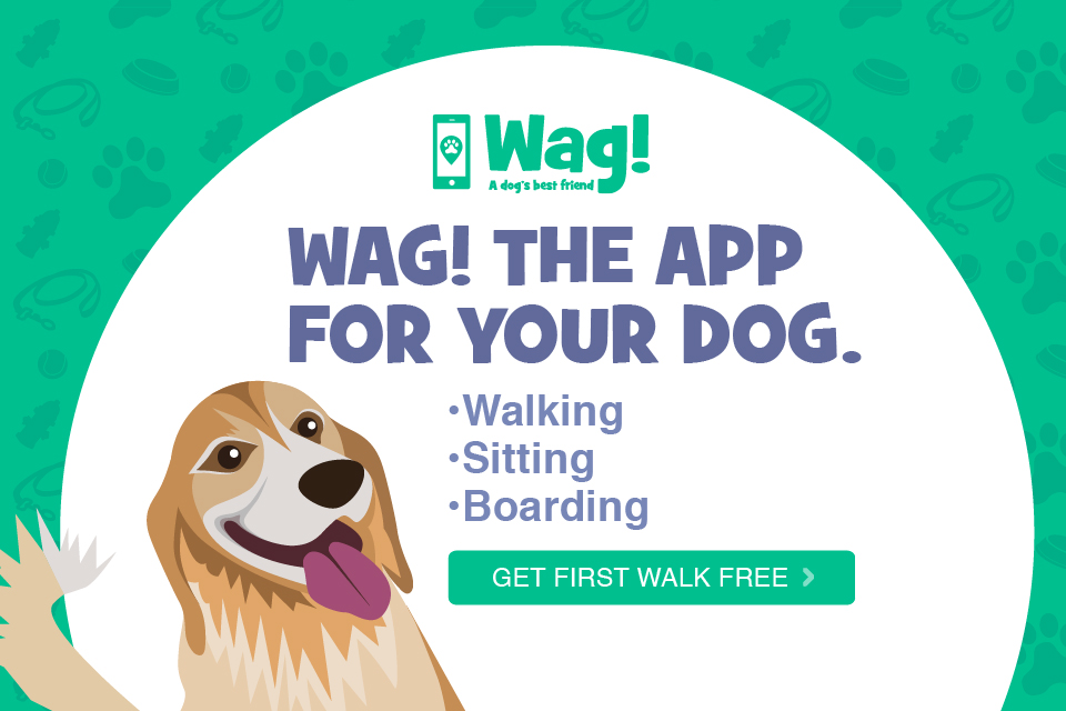 Image result for wag app